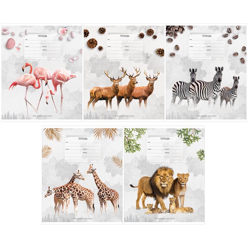"""Анонс-изображение товара тетрадь 12л., косая линия artspace """"животные. into the wild"""", т12нл_35147"""